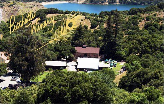 Aerial view of Picchetti Winery